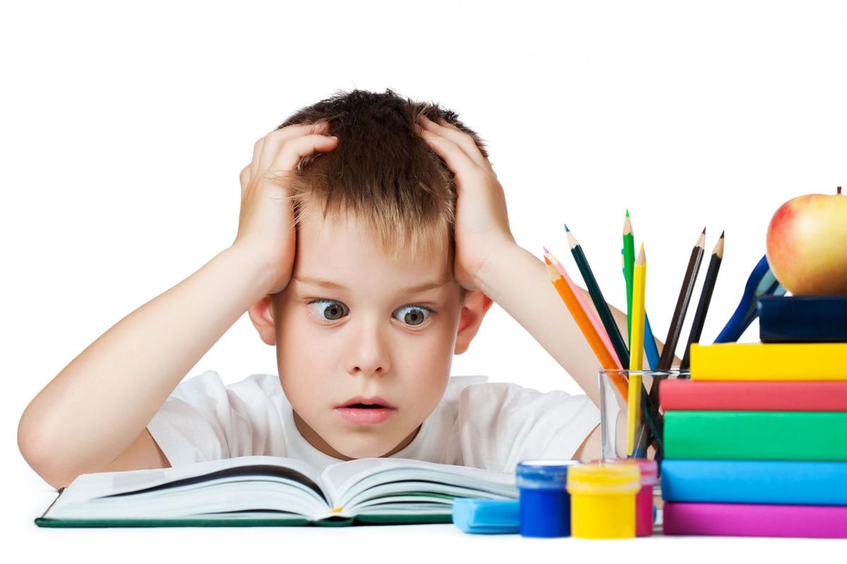 ВХарьковской области отменили занятия в74 школах