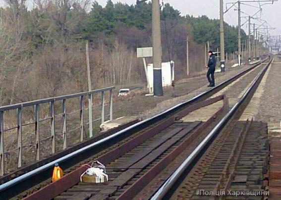 Поезда под Харьковом остановились на 4,5 часа: найден муляж мины