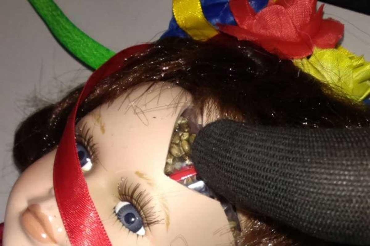Харьковские таможенники обнаружили куклу сконоплей