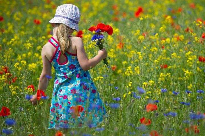 Запорожцам назаметку: сколько выходных будет кконцу весны икогда